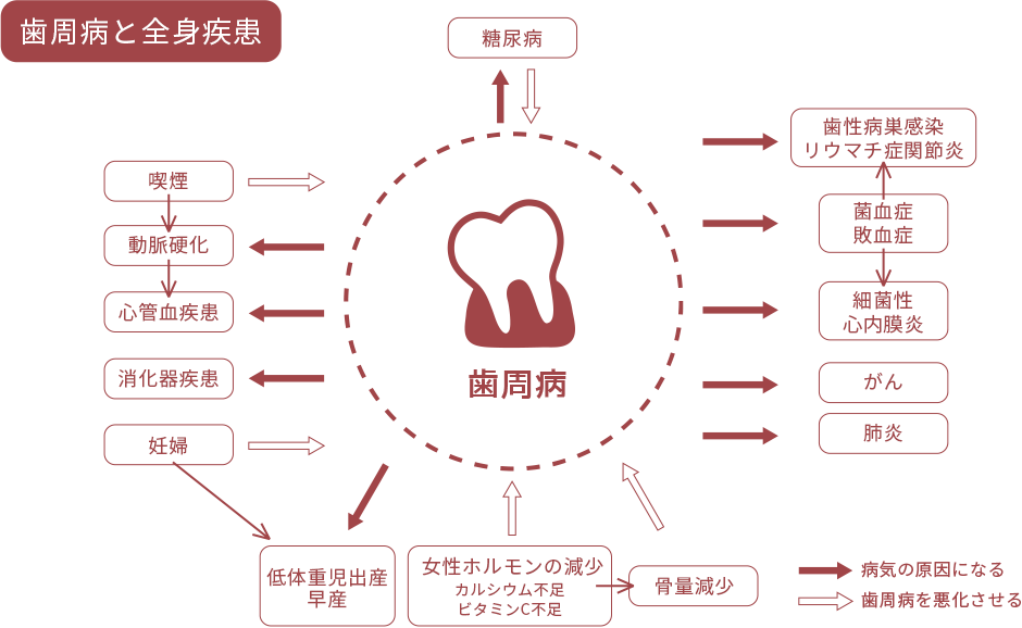 歯周病と全身疾患